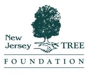 NJTF logo color
