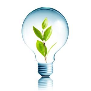 rsz_sustainability